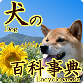 Dog encyclopedia! icon