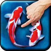 Koi - Aquarium icon