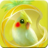 Parrot Wallpapers icon