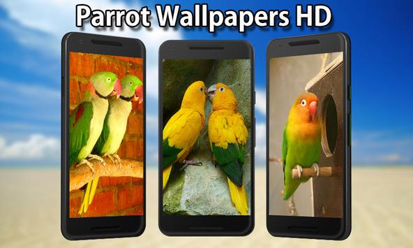 Parrot Wallpapers poster