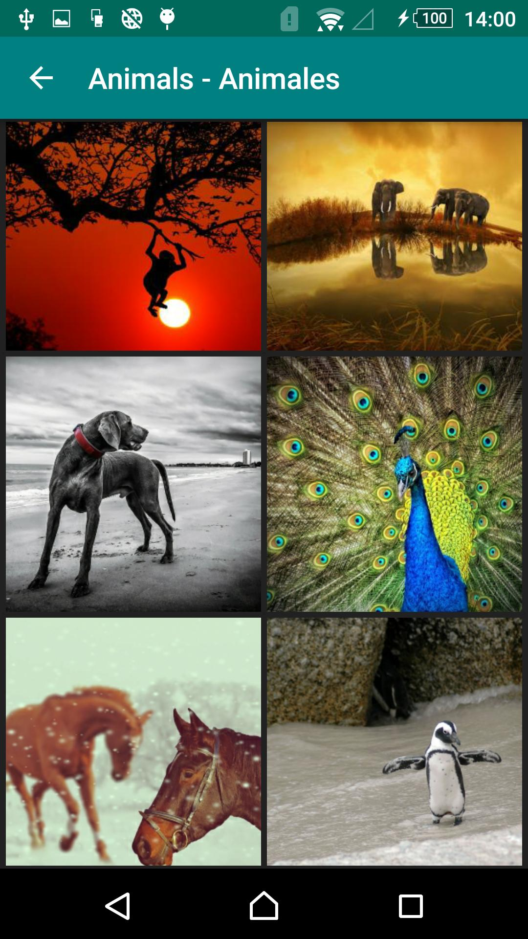Free Wallpapers For Android Apk Download