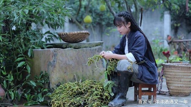 李子柒 Liziqi screenshot 1