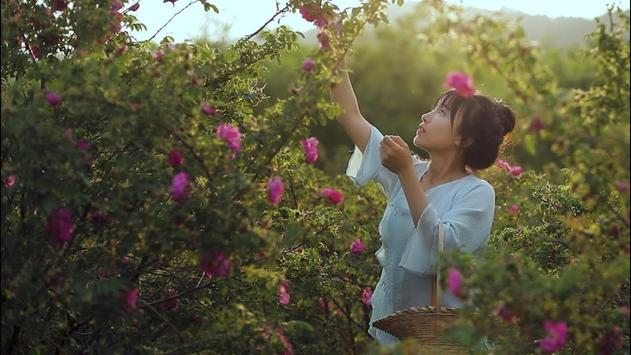 李子柒 Liziqi screenshot 5