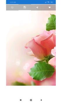 Pink Rose Wallpaper screenshot 1