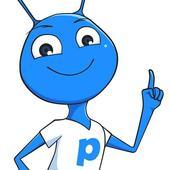 Pinopi icon