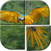 Juegos de Rompecabezas de Aves