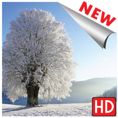 Images hiver icon