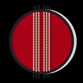 Cricket Info icon