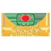 BTV icon