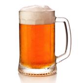 Czech Beerland icon