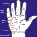 Palmistry in English