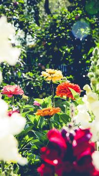 Beautiful Spring Garden APUS Live Wallpaper screenshot 6