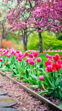 Beautiful Spring Garden APUS Live Wallpaper screenshot 3