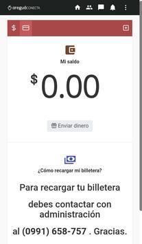 Areguá Conecta screenshot 3