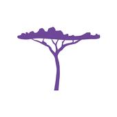 Artnolens icon