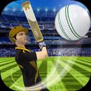 Cricket Multiplayer APK