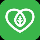 Evergreen icon