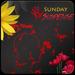 Sunday Suspense