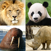Animals Quiz - Learn All Mammals, Birds and more! आइकन