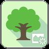 ASUS DayScene - Live wallpaper-icoon