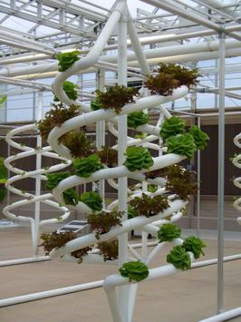 Hydroponics Design Ideas screenshot 5