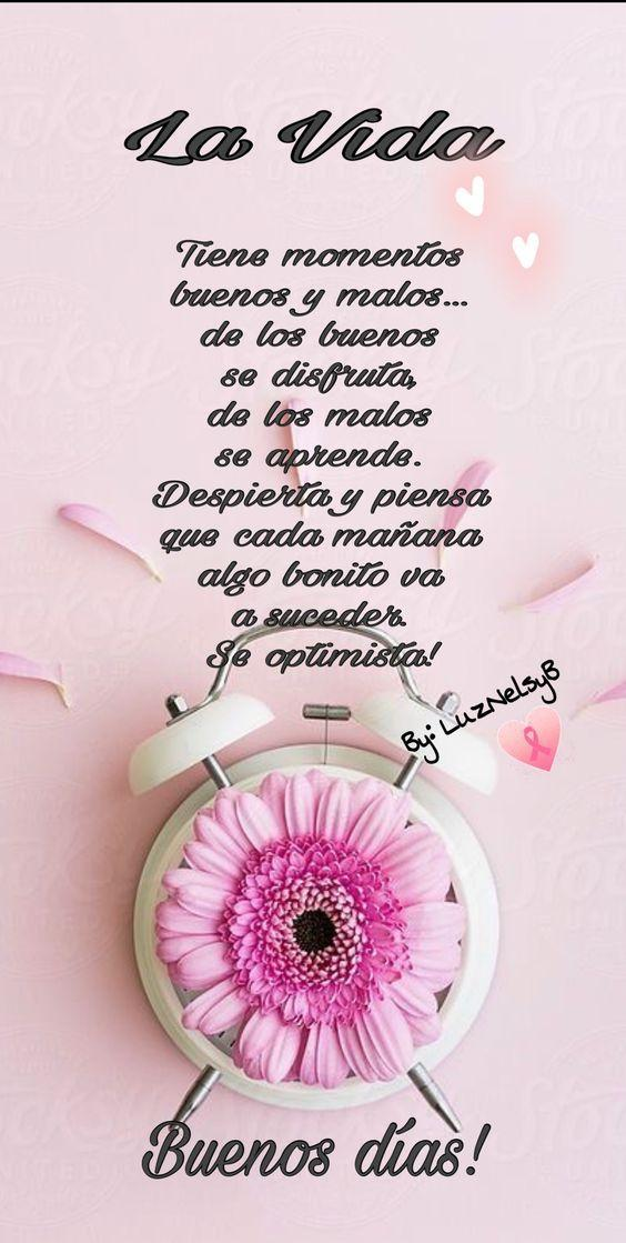 Buenos Dias Frases Bonitas Gif For Android Apk Download