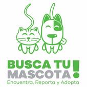 Busca tu Mascota! icon