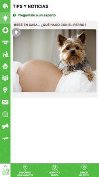 Busca tu Mascota! screenshot 20