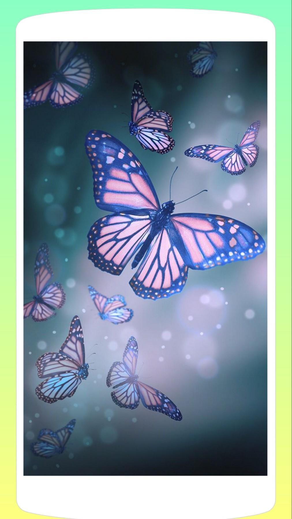 Butterfly Wallpaper Hd 4k For Android Apk Download