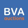 BVA иконка