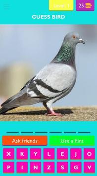 Guess Bird screenshot 1