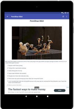 Budidaya Ayam Bangkok screenshot 3