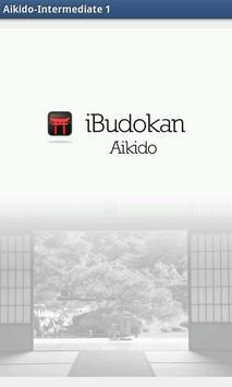 Aikido Intermediate 1 ポスター