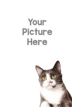 Cat Photo Frame screenshot 2