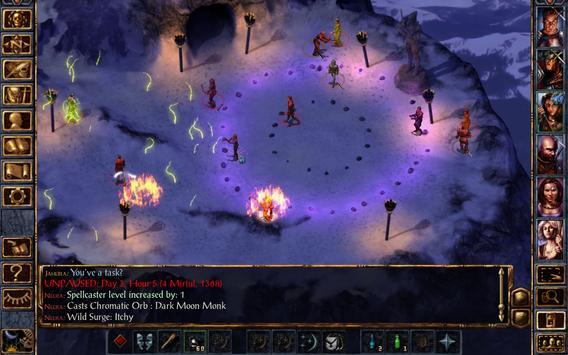 Baldur's Gate: Enhanced Edition screenshot 23