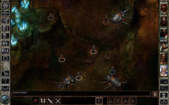 Icewind Dale: Enhanced Edition screenshot 20