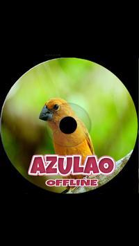 Mestre Canto De Azualo screenshot 1