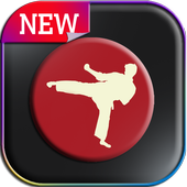 martial arts learning icon