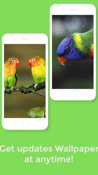 HD Best Birds Wallpaper 4K - Mobile Themes screenshot 7