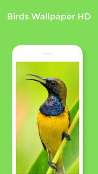 HD Best Birds Wallpaper 4K - Mobile Themes screenshot 4