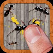 Ant Smasher icône