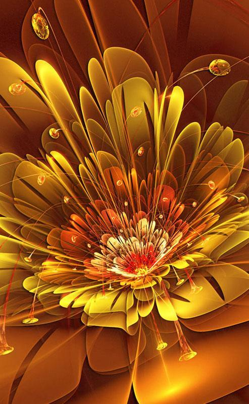 27+ 3D Hd Wallpapers For Mobile Free Download Flower