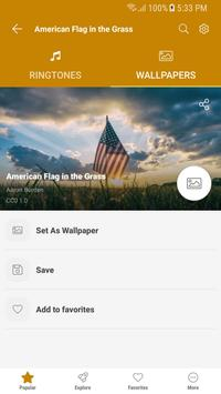 Free Ringtones for Android™ screenshot 16