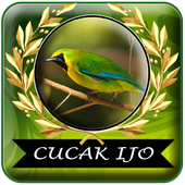 Masteran Cucak Ijo Gacor Mp3 Offline icon