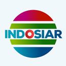 INDOSIAR TV - TV INDONESIA APK Android