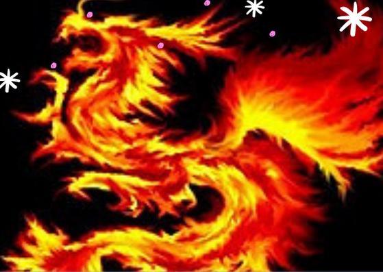 Naga Api Wallpaper Keren For Android Apk Download