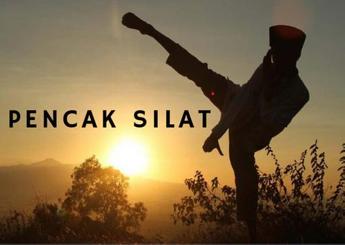 Pencak Silat Indonesia Wallpaper स्क्रीनशॉट 1