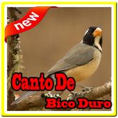 Canto De Bico Duro icon