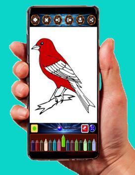 Bird Color screenshot 1