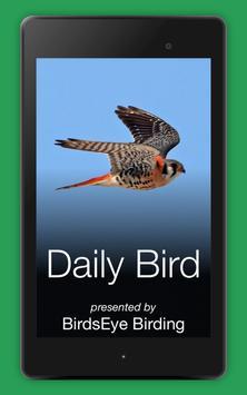 3 Schermata Daily Bird